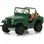 Miniatura - 1:64 - 1974 Jeep CJ-5 - Mecum Auctions - Greenlight